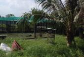 Bán đất đường Lý Tế Xuyên, Phường Linh Đông, Thủ Đức, diện tích 4770m2 giá 6 triệu/m2