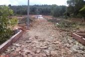 Bán đất nền dự án tại đường Cây Thông Ngoài, Xã Dương Đông, Phú Quốc, Kiên Giang