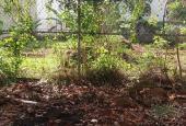 Bán đất nền dự án tại Dự án KĐT mới Bắc Tân Lợi, Buôn Ma Thuột, Đắk Lắk, DT 115m2, giá 1.6 tỷ