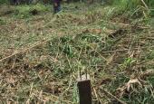 Bán nền đất vườn giá cực rẻ cuối khu dân cư Đoàn Kết, Quốc Lộ 91B