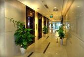 Tòa nhà hạng A Icon 4 cho thuê văn phòng: 170m2 và 500m2, giá chỉ 200 nghìn/m2/tháng