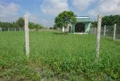 Chú Năm rất cần tiền nên bán gấp đất thổ cư Bình Chánh, 369 m2 đường nhánh Hương lộ 11, giá 1,95 tỷ