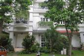 Cho thuê nhiều biệt thự - Villa quận Tân Bình, giá từ 33tr - 100tr/tháng