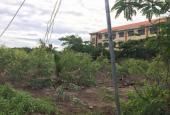 Kẹt tiền bán 1007m2 đất tại Bình Chánh, giá cực rẻ