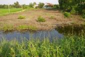Bán lô đất vườn 1042m2 vuông vức, gần cụm KCN Bình Chánh. Giá 2,1tr/m2