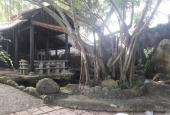 Cho thuê 3000m2 đất có biệt thự và kho xưởng ở xã Phong Phú, Bình Chánh ngay chợ Phú Lạc