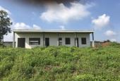 Bán trang trại, tại xã Đông Hòa, Trảng Bom, Đồng Nai, diện tích 37000m2 giá 12,7 tỷ