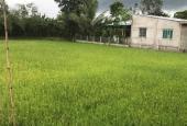 Bán gấp 983m2 đất vườn gần trạm thu phí Cai Lậy, Tiền Giang
