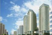 Bán căn hộ chung cư N04, tầng trung, diện tích 125m2, thiết kế 3 phòng ngủ