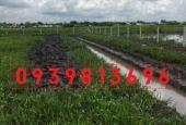 Kẹt tiền, bán gấp lô đất làm vườn ở xã Tân Thạnh Đông, DT 1100m2, giá 850 triệu, SHR