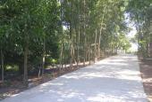 4 lô đất cách Điện Biên Phủ 2km, đường Thanh Hải, Huế, Thừa Thiên Huế