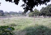 Cần bán gấp 1160m2 đất mặt đường xã Nhuận Trạch, giá rẻ