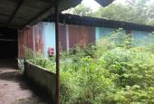 Bán 5100m2 đất vườn ngay đường Phước Thiện, P. Long Thạnh Mỹ