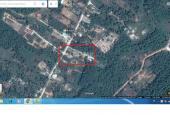 Đất mặt tiền đường Búng Gội, Phú Quốc chỉ 590 tr/nền, 0898 343436