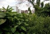 Bán đất 164.8 m2 đã lên thổ đường Vườn Lài, P. An Phú Đông, Q. 12
