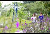 Mở bán các lô biệt thự song lập 200m2 The Phoenix Garden, Đan Phượng, Hà Nội