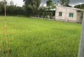 Bán gấp 982.7m2 đất vườn xã Phú Nhuận gần trạm thu phí Cai Lậy, Tiền Giang, Quốc Lộ 1A khoảng 40m