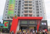 Cho thuê căn hộ Phú Thạnh, 53 Nguyễn Sơn, Tân Phú. DT: 55m2, 1PN, 1WC, đủ nội thất 6.5tr/th