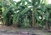 Lô đất 10x18m khu Minh Phước, gần căn hộ Opal Riverside Hiệp Bình Chánh