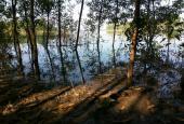 200m đất ven hồ Trị an, nơi thả hồn theo sóng nước và mây trời. diện tích 10000m vuông
