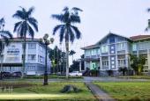 Mở bán biệt thự song lập khu đô thị PG An Đồng. LH 0917.361.423