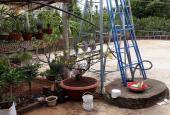 Bán 2 hecta rẫy cà phê, tiêu huyện Krông Ana, Đắk Lắk, giá 1,5 tỷ