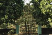 Bán nhà vườn Xóm Vân(Làng Đào) khu 4 xã Thanh Minh, thị xã Phú Thọ 1500m2, giá 800tr