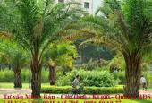 Chủ nhà kẹt tiền bán lỗ căn hộ Green Valley, phường Tân Phú, giá tốt nhất thị trường