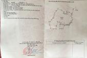 Chính chủ cần bán 3000m2 đất ở Thạch Đà, Mê Linh, Hà Nội