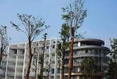 Bán đất KĐT Nam Vĩnh Yên, diện tích từ 100m2 - 600m2 nhiều vị trí đẹp. LH: 0985.158.831