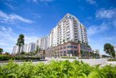 Vì sao nên sở hữu căn hộ Sala, Đại Quang Minh, Quận 2
