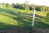 Tôi chính chủ bán gấp lô đất vườn 500m2 giá rẻ cho nhà đầu tư, sổ hồng.