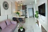 Cần bán căn hộ Sơn Trà Ocean View, DTCN 50m2, giá 1 tỷ 700tr, 1 căn duy nhất, LH 0906855755