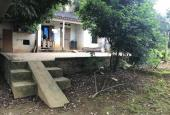 Chính chủ cần bán trang trại nhà vườn 6000m2 Lương Sơn, Hòa Bình