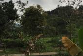 Bán đất tại đường 35, Xã Nam Sơn, Sóc Sơn, Hà Nội diện tích 912m2, giá 1.6 triệu/m2