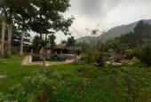 Bán 12ha biệt thự nghỉ dưỡng Bãi Dài, Tiến Xuân, cạnh khu đô thị Xanh Villas, giá 125 tỷ