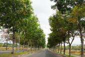 Bán căn 2pn khu Ruby view công viên cây xanh giá 2.45 tỷ full nội thất Celadon City 0909428180