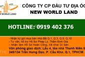 Bán nhà hẻm xe hơi đường Nguyễn Thiện Thuật P1 Q3 DT 3.1x12m, giá 9 tỷ. LH: 0919402376