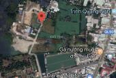 Bán đất nông nghiệp tại Quốc Lộ 50, xã Phong Phú, huyện Bình Chánh, giá 7 triệu/m2