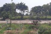 Cần bán nhà xưởng 2,1ha đất 50 năm Văn Giang, Hưng Yên