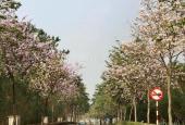 Chính chủ bán biệt thự 5 phòng ngủ khu Q Ciputra Tây Hồ, Hà Nội. LH 0989 196 538