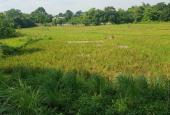 Chính chủ cần thanh lý 3200m2 thổ cư view cánh đồng, xã Hòa Sơn, Lương Sơn, Hòa Bình