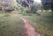 Cơ hội sở hữu ngay 19.440m2 đất tại thôn Bùi Trám, Hòa Sơn, Lương Sơn, Hòa Bình