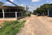 Bán đất xã Phước Tân, thành phố Biên Hòa, Đồng Nai, diện tích 84000 m2