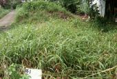 Bán đất nền tại đường Nguyễn Thông, xã Tầm Vu, Châu Thành, Long An