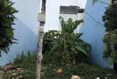 Bán đất gần trường tiểu học Tân Tạo A, ngay chợ Bà Hom diện tích 6x21m