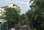 Không còn lô thứ 2 Đất thổ cư mặt tiền đường nhựa ngay sông Sài Gòn xã Bình Mỹ Củ Chi