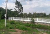 Bán trang trại, khu nghỉ dưỡng tại Đường Quốc Lộ 22, Xã Phước Hiệp, Củ Chi, Hồ Chí Minh diện tích 4