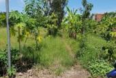 Đất mặt tiền đường Huỳnh Tấn Phát, Phú Xuân, Nhà Bè, cần bán gấp, nhanh, gọn lẹ!