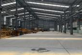 Cho thuê kho xưởng ở Kiêu Kỵ, gần Vincity Gia Lâm diện tích 500-1000-2000-3000m2